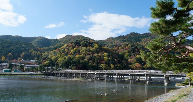 Things to do in Arashiyama (Autumn)