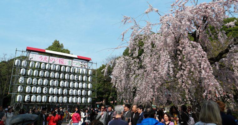 TOKYO: Ueno Park 上野公園