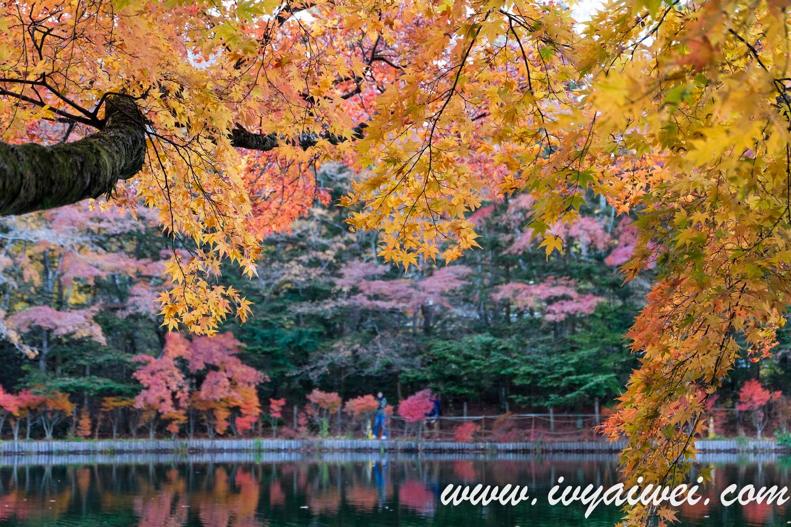 Things to do in Karuizawa